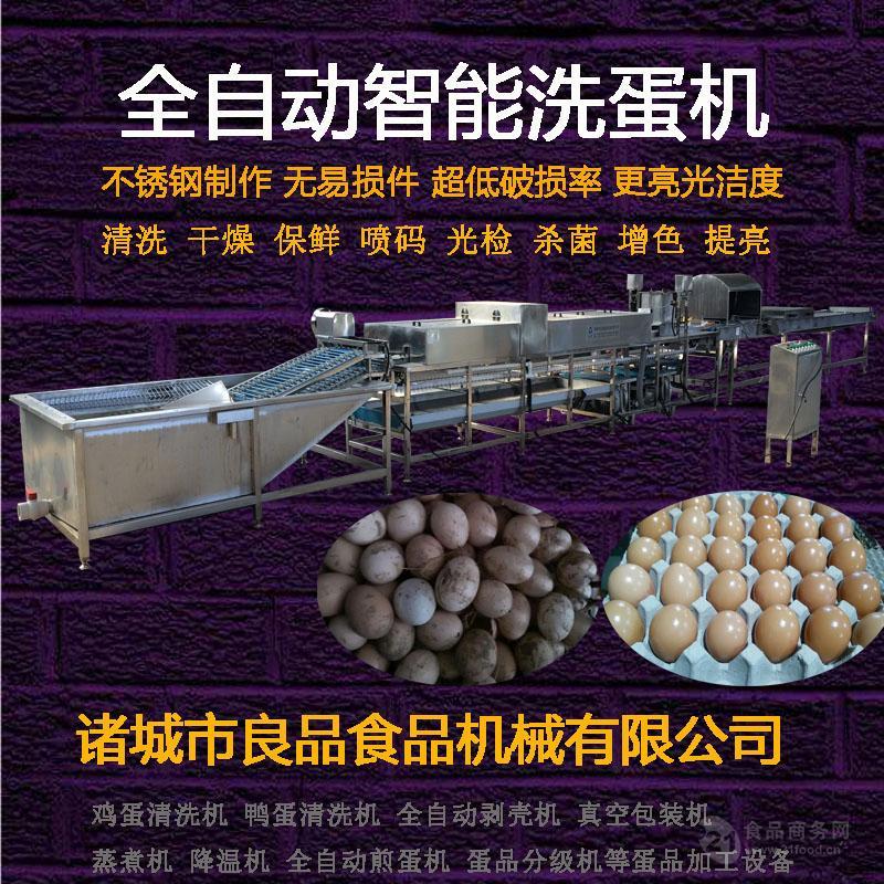 优质洗蛋机 良品专业生产 货真价实 产量高效果好