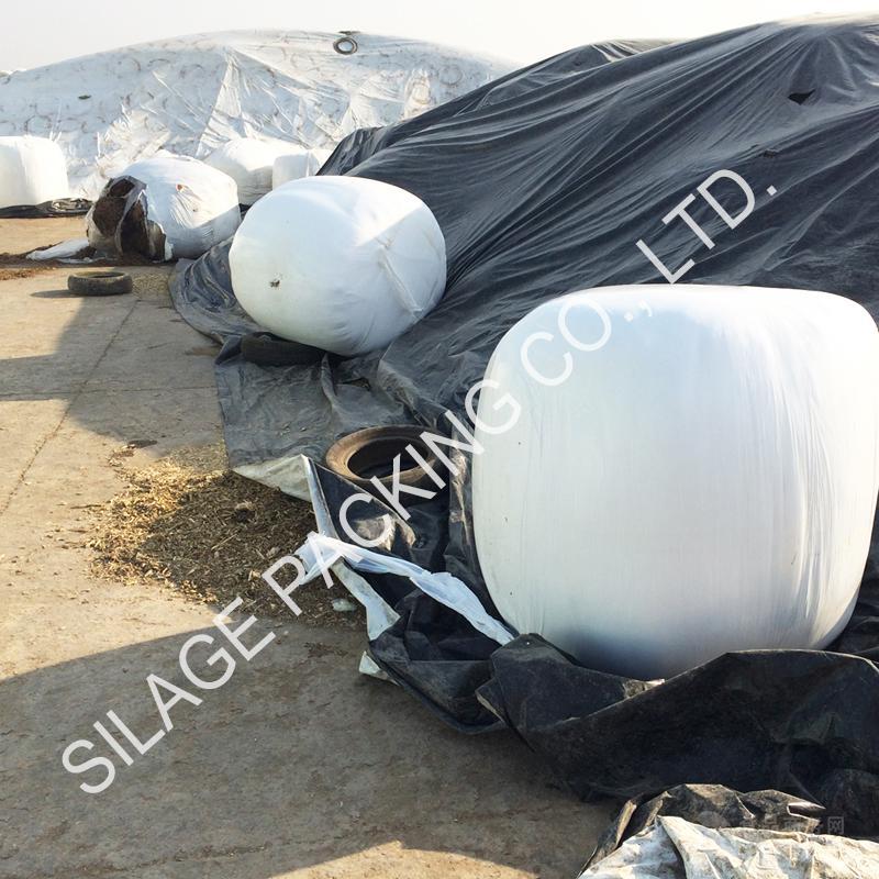 青贮牧草膜 抗UV 抗氧化 高粘性 拉伸性强 出口英国 SILAGE WRAP