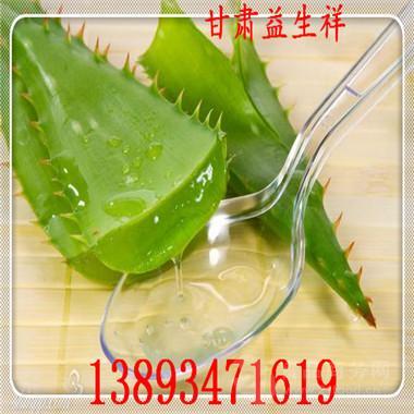 芦荟粉供应 厂家包邮 专业提取 基地生产
