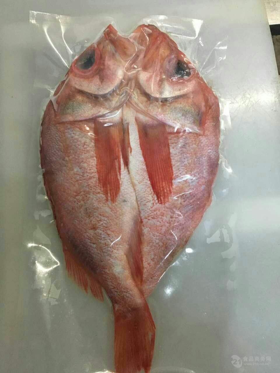 开背红鱼红石斑鱼开背鱼