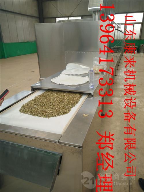 新型环保南瓜子熟化设备坚果类食品烘烤设备