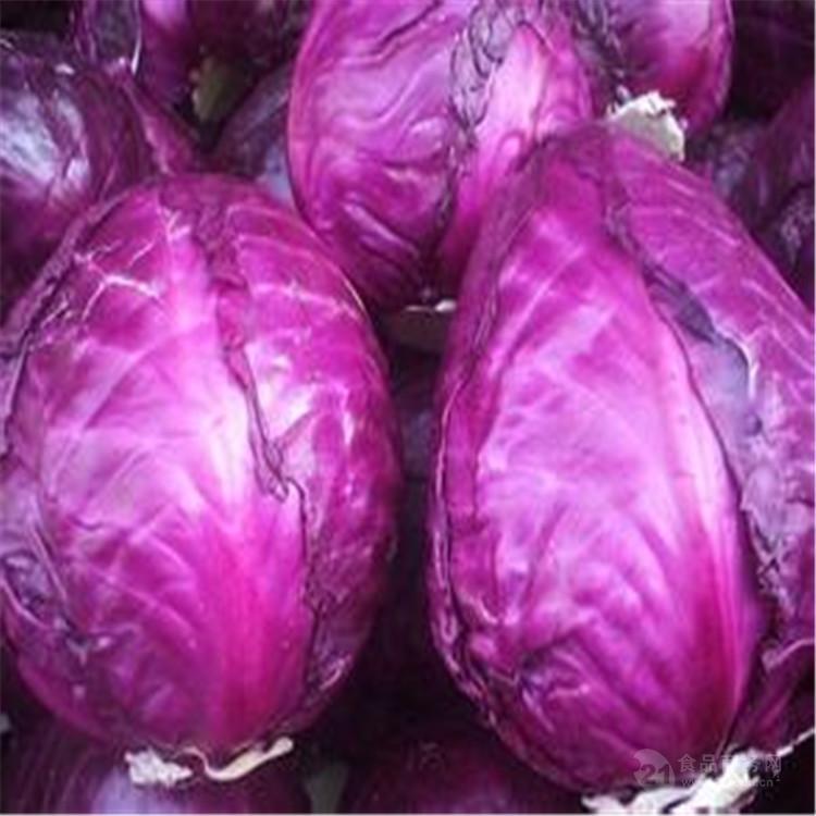 紫甘蓝酵素粉 兰州厂家现货包邮