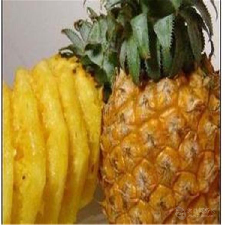 菠萝酵素粉 厂家现货包邮