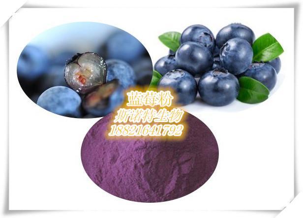 蓝莓速溶粉    固体饮料原料