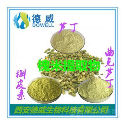 天然槐米提取物 优质槐米提取物工厂 槐米提取物价格稳定