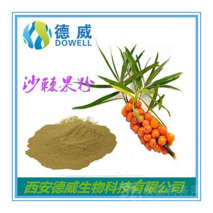 天然沙棘果粉 沙棘果粉营养价值 沙棘果粉批发价格 沙棘黄酮粉