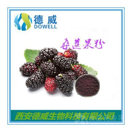 桑葚果粉 Mulberry powder 桑葚果粉优势供应厂家
