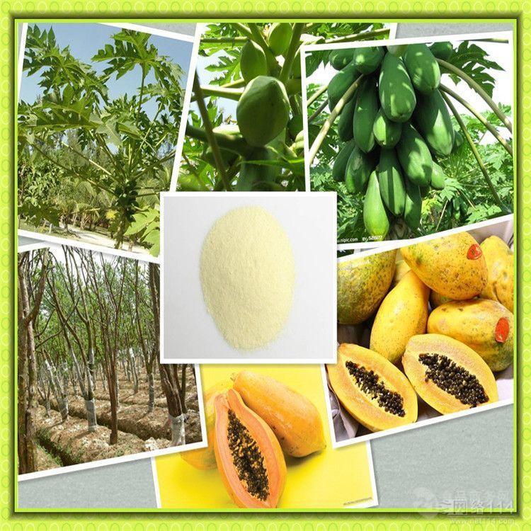 厂家供应 木瓜粉 木瓜浓缩粉 量大从优