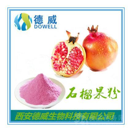 石榴果粉Pomegranate Fruit Powde石榴果粉厂家 石榴果粉价格