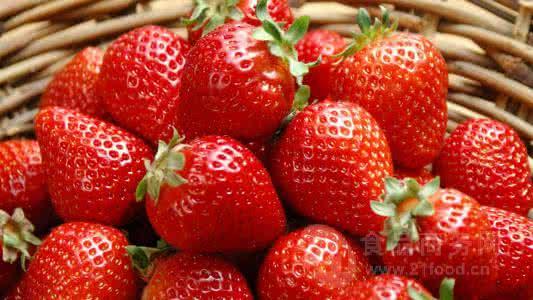 草莓粉 草莓速溶粉 草莓酵素 天然果蔬谷物粉 草莓浓缩粉
