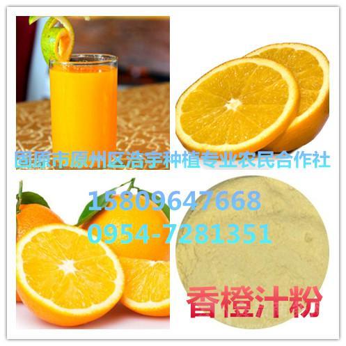 供应香橙汁粉  香橙果粉  香橙提取物