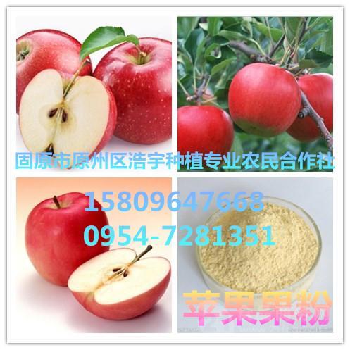 供应苹果果粉  苹果速溶粉 苹果浓缩粉
