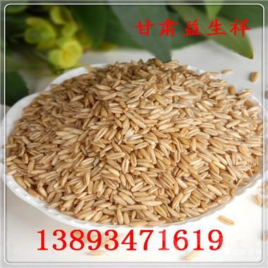 燕麦籽粉供应 谷物代餐 营养 全国包邮 燕麦籽粉