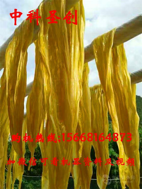 广东河源腐竹机械设备价格 腐竹机厂家