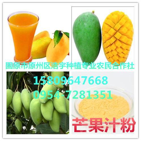 供应芒果汁粉 芒果提取物  芒果果粉