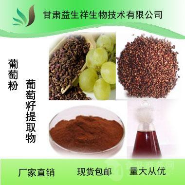 厂家直销 现货供应 优质葡萄粉 葡萄籽提取物  固体饮料速溶