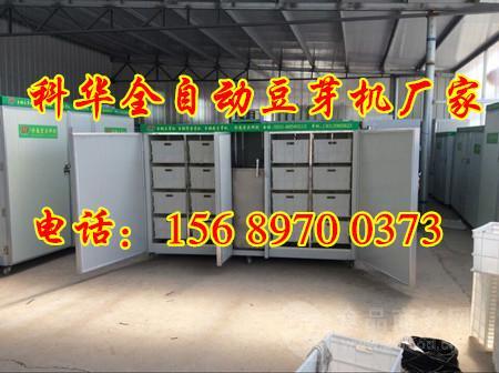 小型生豆芽的機器多少錢一台、多功能豆芽機廠家