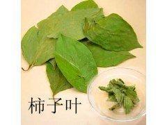 厂家供应 柿子叶提取物 10:1柿子叶黄酮 清热润肺 消肿 品质保证
