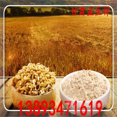 天然莜麦粉 营养丰富 含糖低 包邮 供应