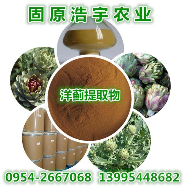 宁夏香草生物朝鲜蓟提取物 洋蓟素5%  朝鲜蓟素 医药保健原料