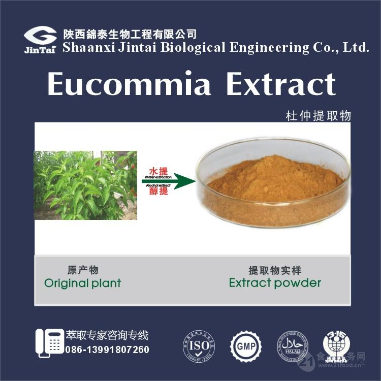 【现货供应】杜仲提取物 绿原酸25%