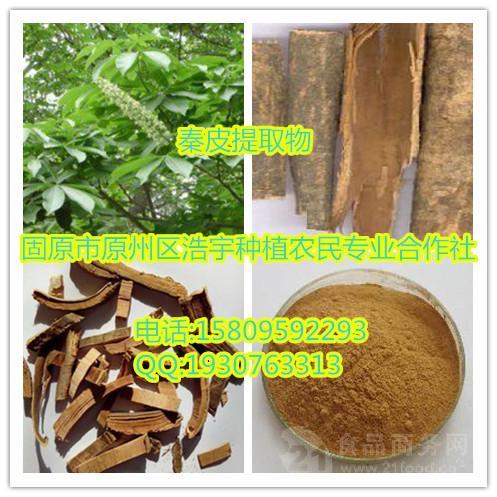 秦皮提取物  梣皮,鸡糠树、青榔木、白荆树. 速溶粉 浸膏粉