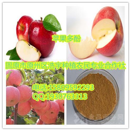 苹果提取物 苹果多酚  速溶粉  浸膏粉  生粉 原粉