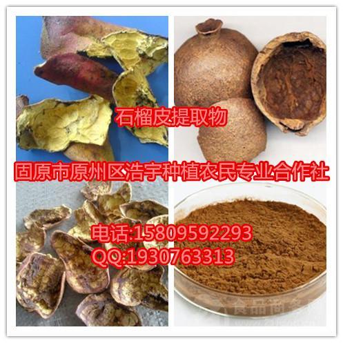 石榴皮提取物 鞣花酸 多酚  速溶粉 浸膏粉