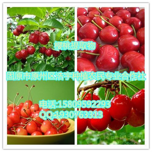 樱桃提取物  樱桃多糖 樱桃粉  速溶粉 浸膏粉