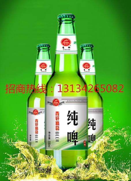 箱装低成本大瓶啤酒招商加盟批发价格@山东 青岛青轩