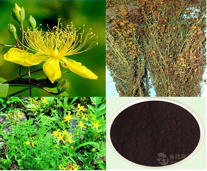 金丝桃素0.6% 天然贯叶连翘提取物 医药原料