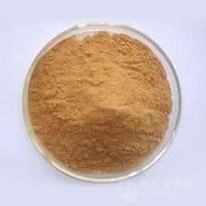 郁金提取物 10:1 调节血脂 抗菌 凉血破瘀 郁金根提取物
