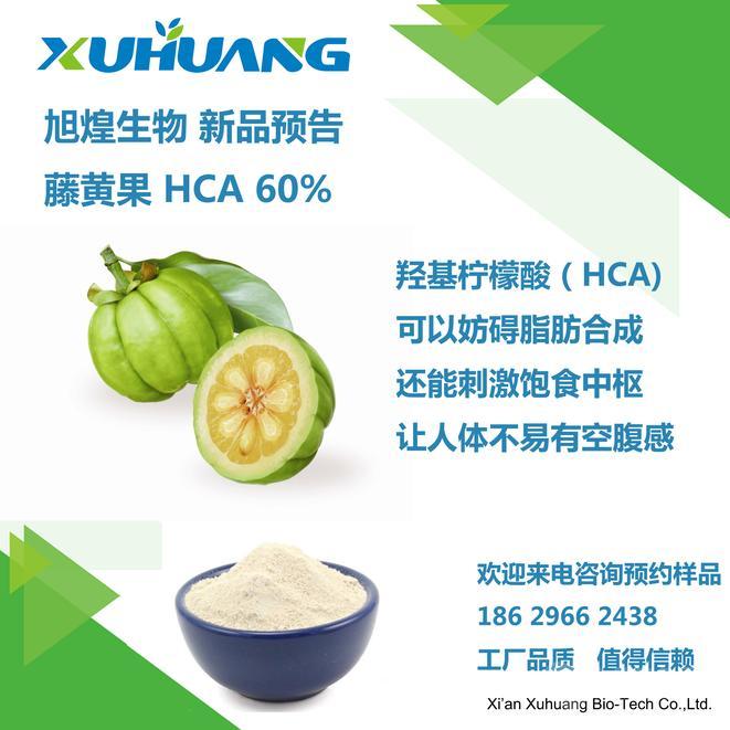 进口品质 旭煌生物 厂家直销 藤黄果提取物 HCA 60%