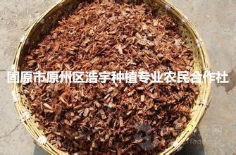 柳树皮提取物  柳树皮速溶粉   植物生根粉  柳树皮催很粉