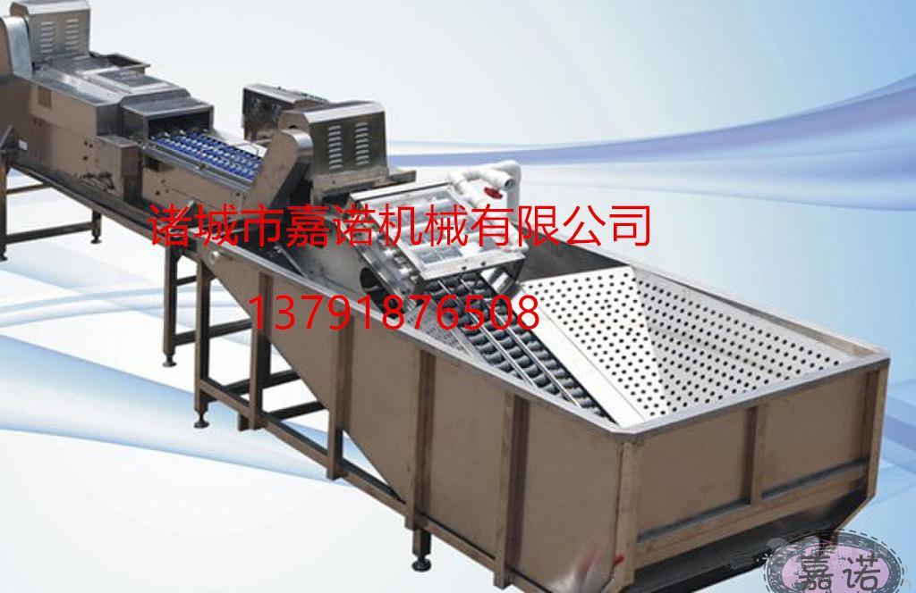 JN-7000鸭蛋清洗机 洗蛋机 全自动洗蛋机