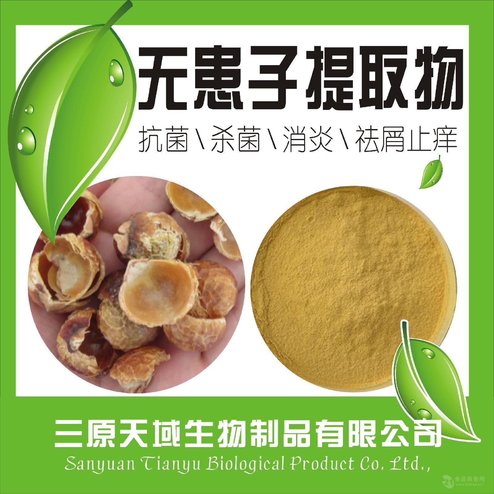 纯天然无患子提取物 无患子皂甙苷40% 优质天然原料提取 质量保证