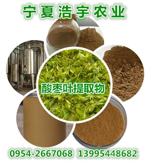 宁夏厂家酸枣叶提取物 酸枣叶黄酮/酸叶酮10% 东方睡叶提取物