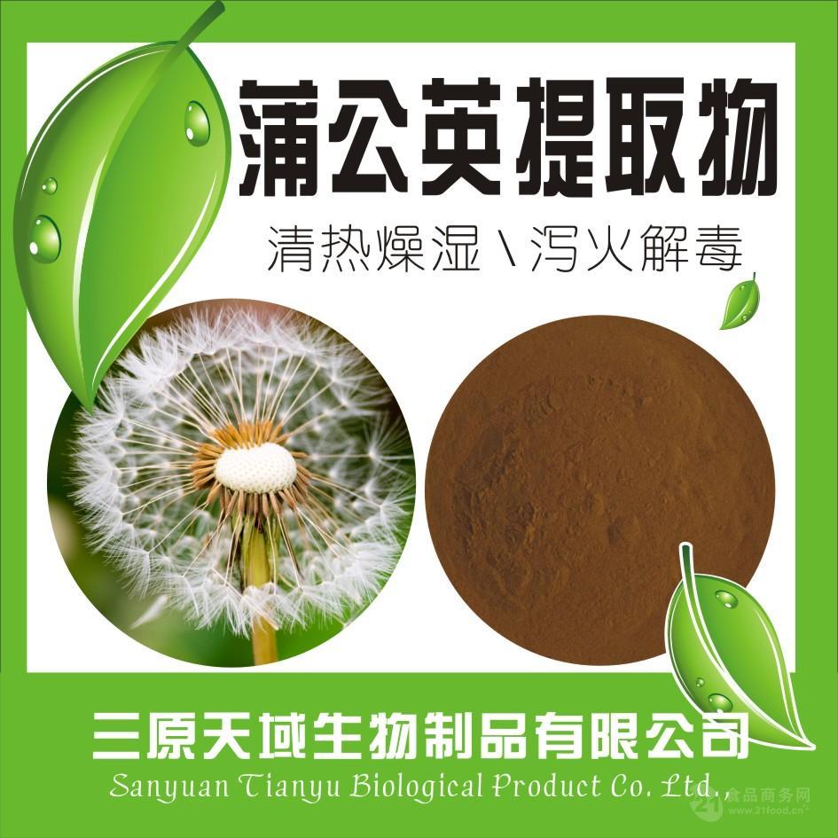代理蒲公英提取物  蒲公英黄酮5%  厂家生产 品质保证