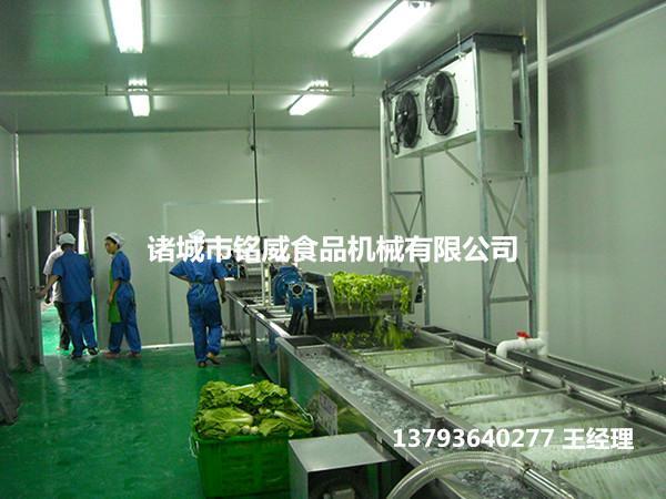 净菜加工方案 净菜加工生产线设备