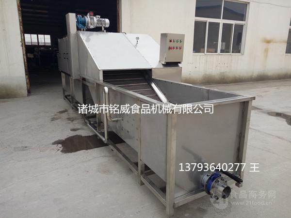 大姜清洗机 洗姜机生产厂家