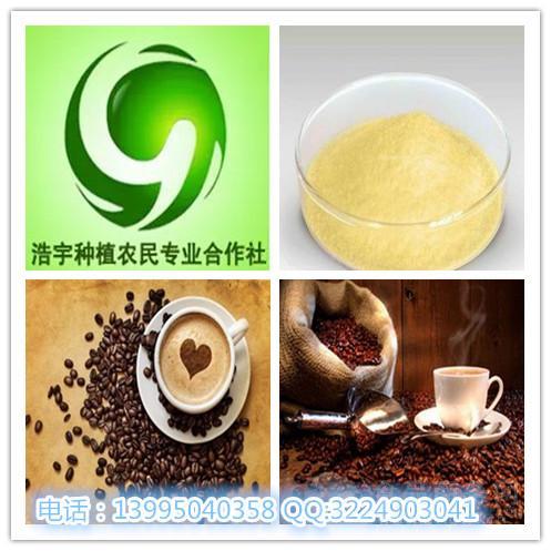 咖啡酸 3,4-二羟基肉桂酸 厂家直销 现货供应
