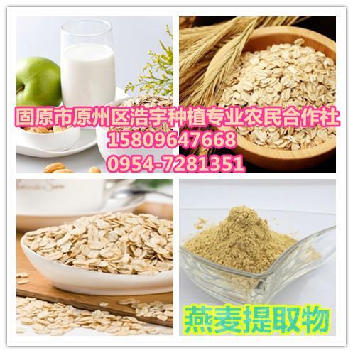 燕麦种子粗粮粉 燕麦提取物 规格10:1