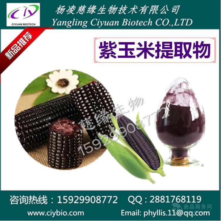 紫玉米提取物 花青素10%