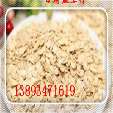 野燕麦粉 5倍浓缩 量大从优 包邮 质量保证 供应