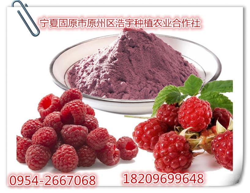 树莓粉纯天然树莓汁粉 树莓浆粉(无任何香精色素)喷雾干燥