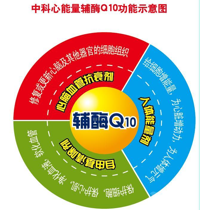 脂溶性辅酶Q10 提供外检报告 厂家直销SC HACCP认证。