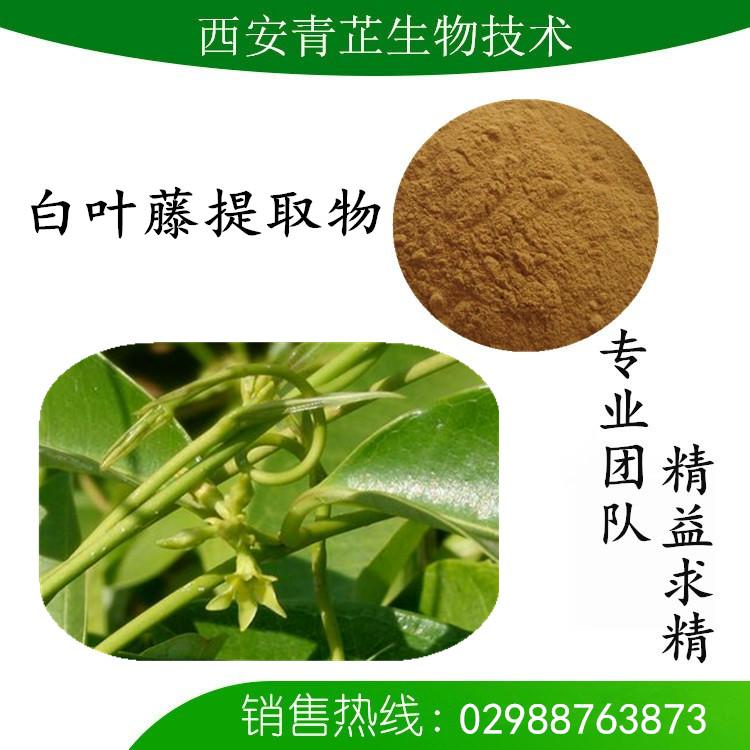 白叶藤水提物厂家 白叶藤提取物价格