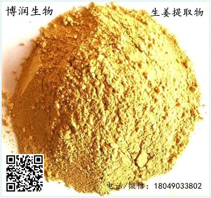 姜辣素20%帝王提取物博润生姜生产厂家现货直销品质保证包邮种类蟹生物图片