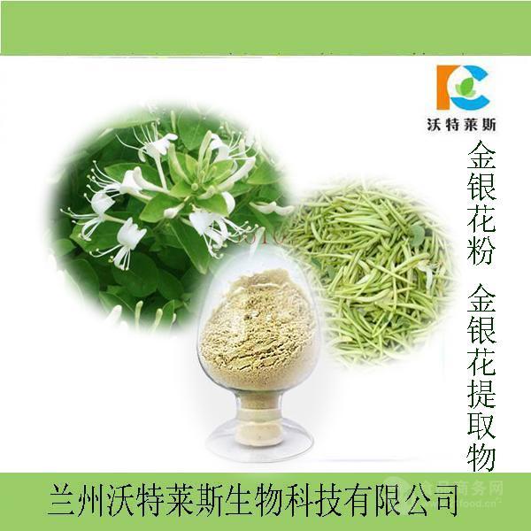 金银花粉 金银花提取物 量大从优 1公斤起订