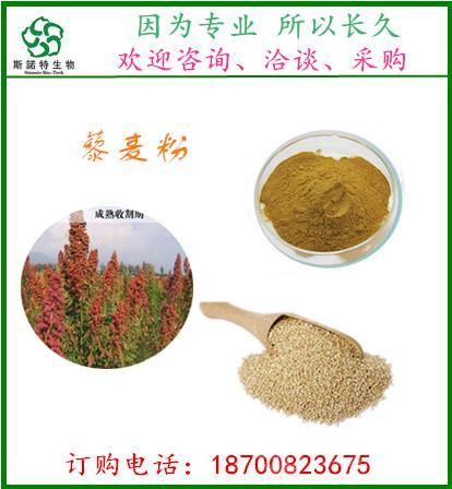 藜麦提取物10:1  藜麦粉 代餐粉   斯诺特生物